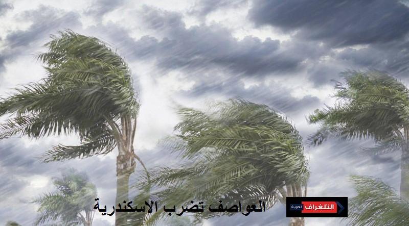 العواصف تضرب الاسكندرية