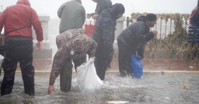 بالفيديو...الأسماك تتساقط في شوراع مالطا