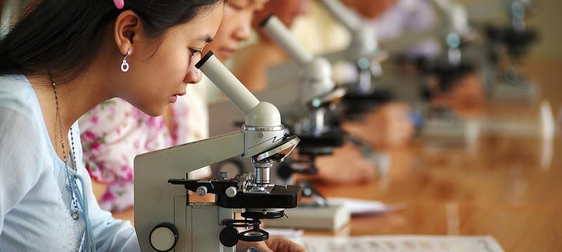 الأمم المتحدة تحتفل باليوم الدولي للمرأة والفتاة في ميدان العلوم