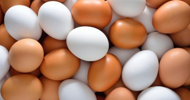 هل بقع دموية في البيضة خطيرة على الصحة؟