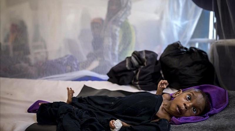 """الصليب الأحمر: تجدد القتال في اليمن يهدد السكان بـ""""الأسوأ"""""""