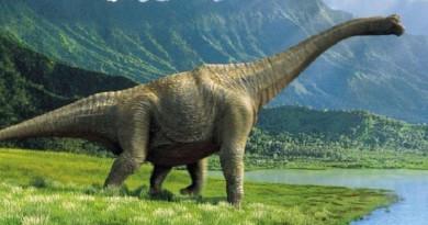 دراسة تكشف: الأطفال الذين يحبون الديناصورات يتسمون بذكاء شديد