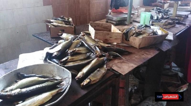 وزارة الصحة : إعدام 12 طن أسماك مملحة ومدخنة فاسدة
