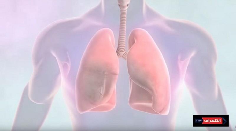 فى اليوم العالمي لمكافحة مرض سرطان الرئة... كيف نحمي أنفسنا؟