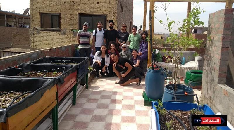 طلاب الجامعة الأمريكية بالقاهرة يؤسسون حديقة مستدامة على سطح مبنى في منطقة الحطابة