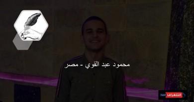محمود عبد القوي