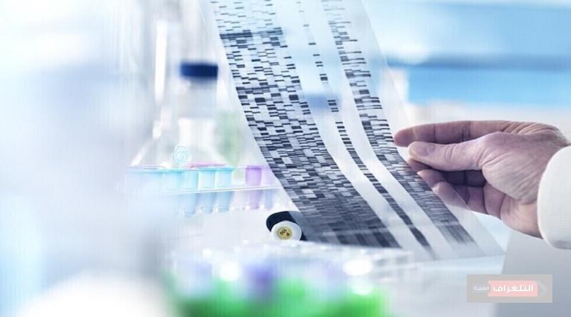 تحديد الجينات المسؤولة عن عدوانية سرطان الدماغ القاتل يقدم أهدافا دوائية واعدة