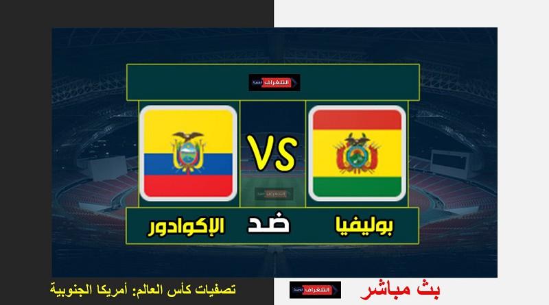 بوليفيا والإكوادور تصفيات كأس العالم: أمريكا الجنوبية