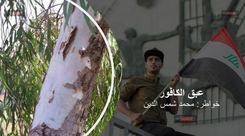 """عبق الكافور … """"شعر"""" محمد شمس الدين"""