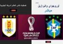أوروجواي والبرازيل تصفيات كأس العالم: أمريكا الجنوبية
