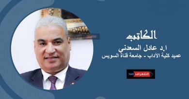 عادل السعدني يكتب: العلاقات المصرية مع جنوب السودان